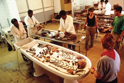 Paleopatoloji Nedir?
