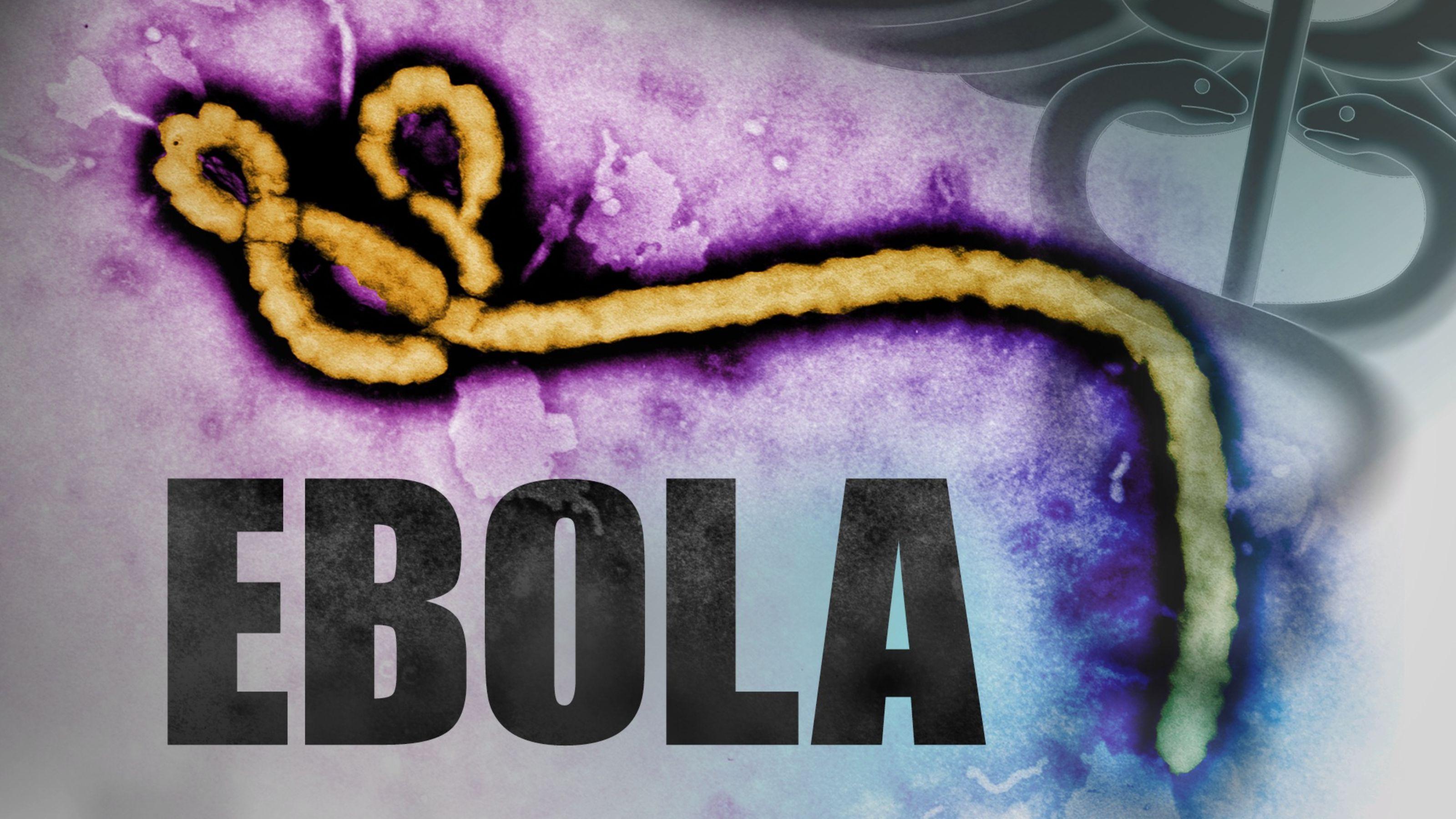 Ebola Virüs Hastalığı (EVH) ve Ebola Virüsü Nedir?