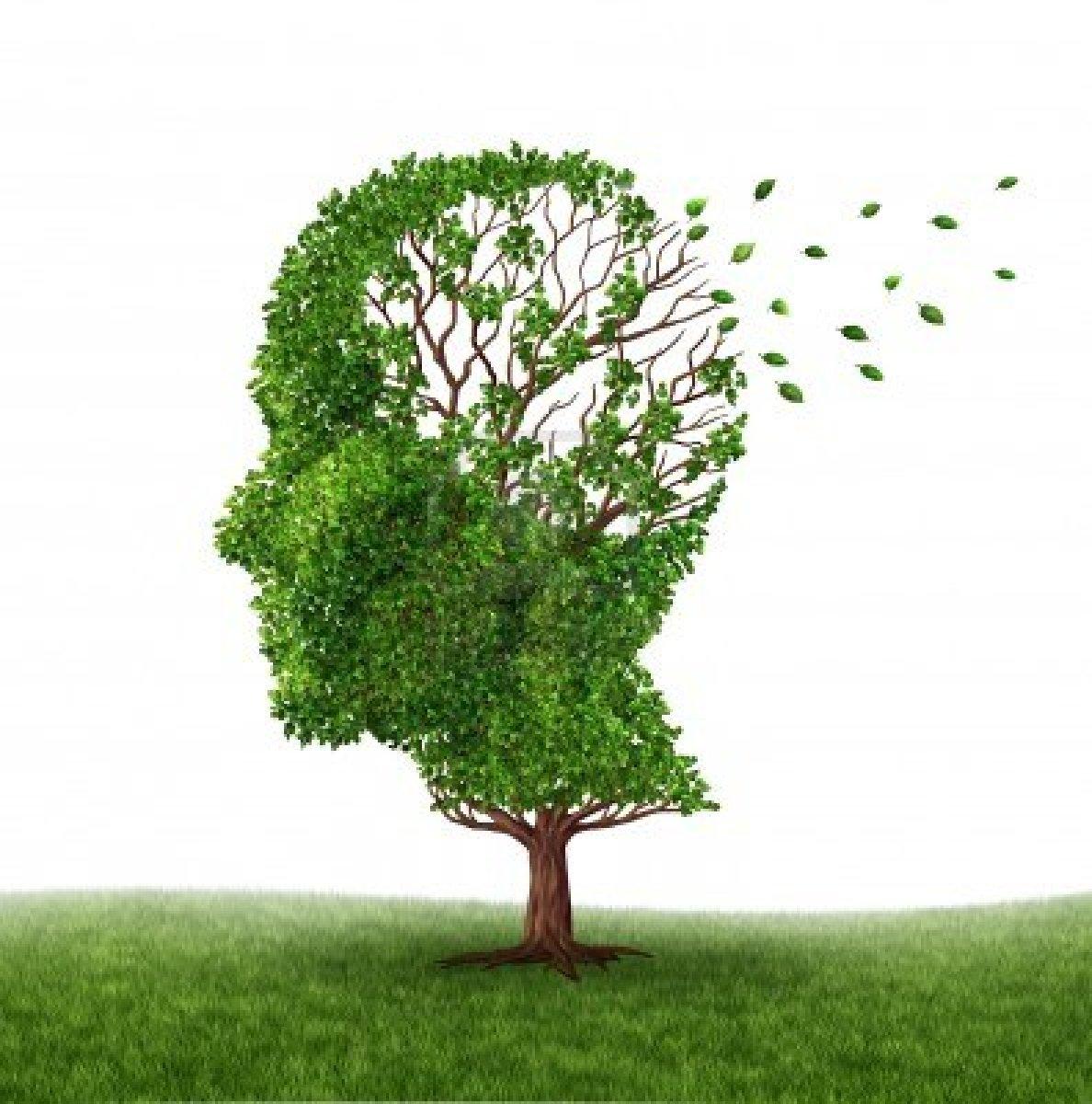 Vücudumuzda D Vitamini Eksikliği Alzheimer Riskini Arttırır