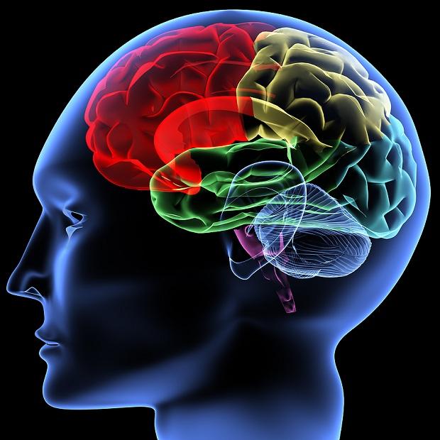Epilepsi (Sara) ve Belirtileri