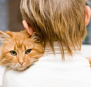 Kedi Tırmığı Hastalığı Nedir?