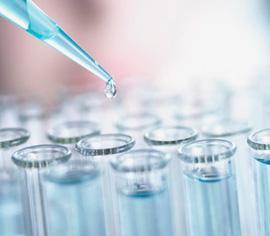 HIV Testleri:HIV Testi Ne Zaman Yapılmalı? Erken HIV Tanısı İçin Hangi Testler Kullanılır?