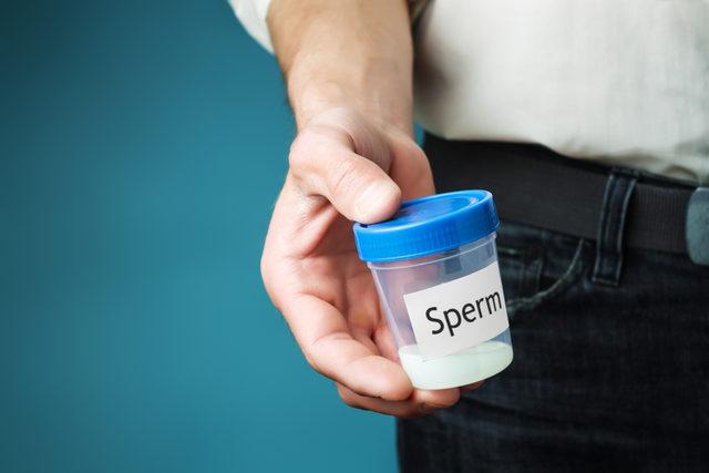 Sperm Testi İle İlgili Sorular