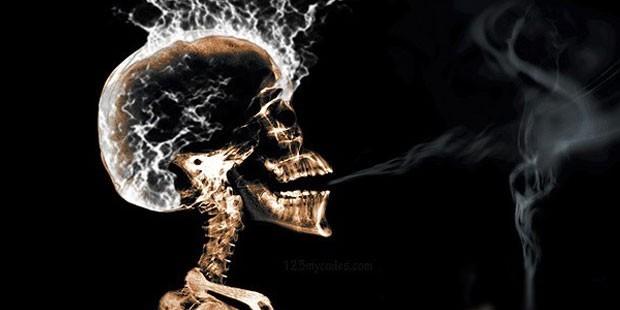 Tütün ve Alkol Tüketimi Beyinde Atrofi ve Yaşlanmaya Neden Olur?