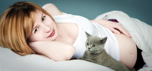 Kedilerle Aynı Yerde Yaşamak Riskli Olabilir