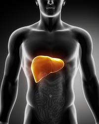 Siroz Hastaları Nasıl Beslenmelidir?