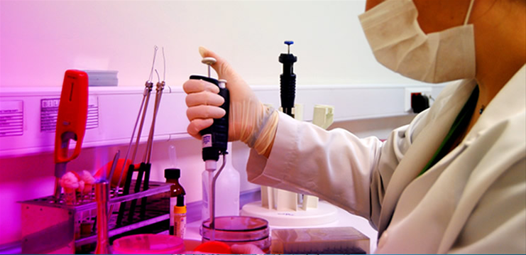 Gaitada Parazit Testi Nedir? Nasıl Yapılır?