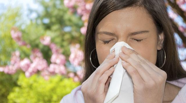 Bahar Aylarında Neden Alerjiler Artar?