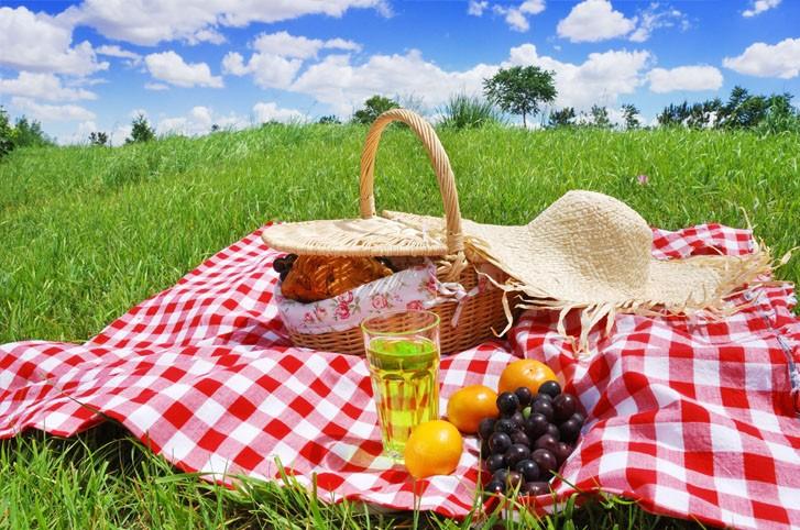 Piknikte Arı Sokmalarını Önleyecek Tavsiyeler