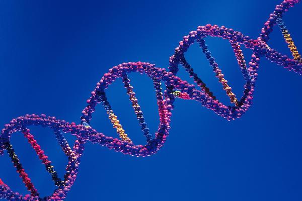 HCV Virusu HCV RNA Testi İle Ne Zaman Kanda Saptanır?