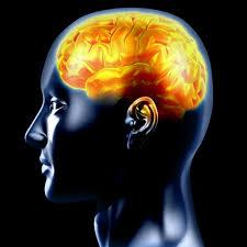 Epilepsi Tedavisinde Cerrahi Yöntem Başarılı Sonuçlar Veriyor