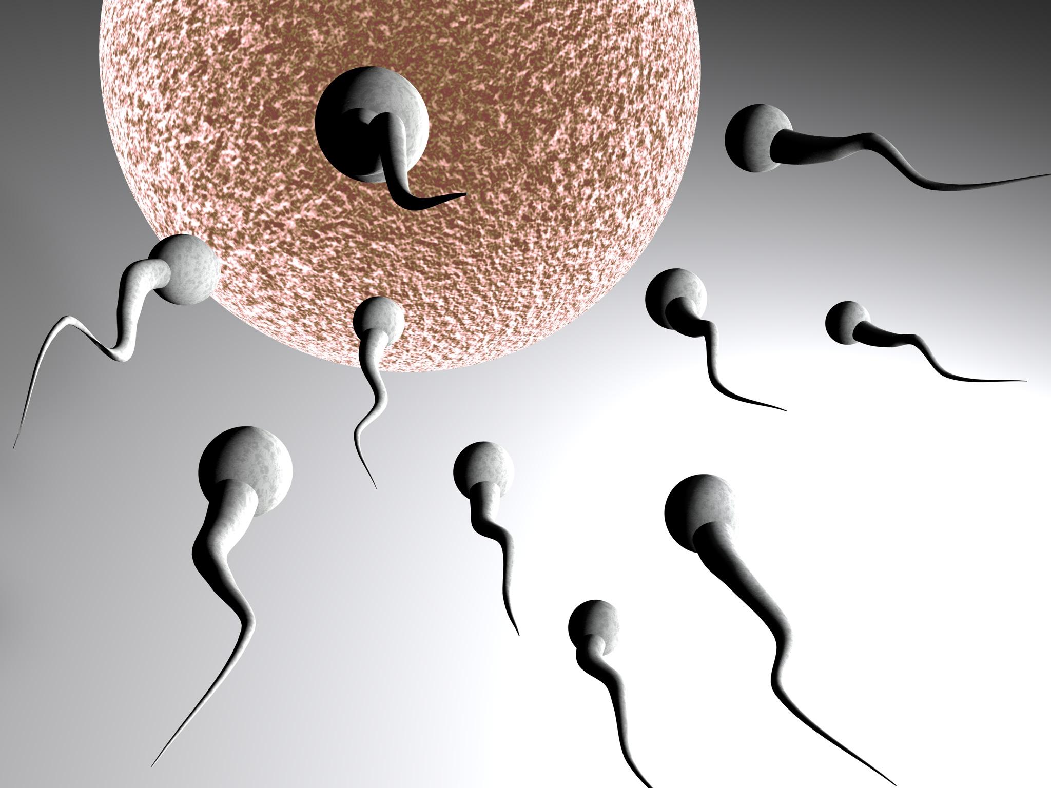 Erkekte Kısırlığın Genetik Sebepleri Nelerdir?