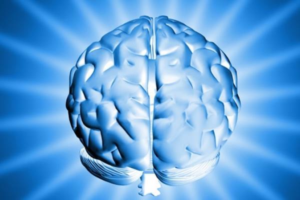 Hafızamzı Zayıflatan 4 Önemli Neden Nedir?