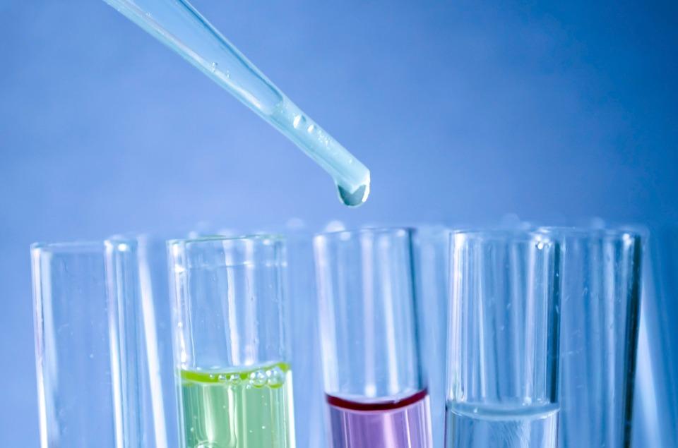 Kist Hidatik İndirek Hemaglütinasyon Testi Nedir?