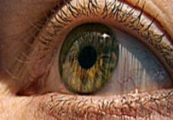 Gözlerde Tavuk Karası Hastalığı Nedir?