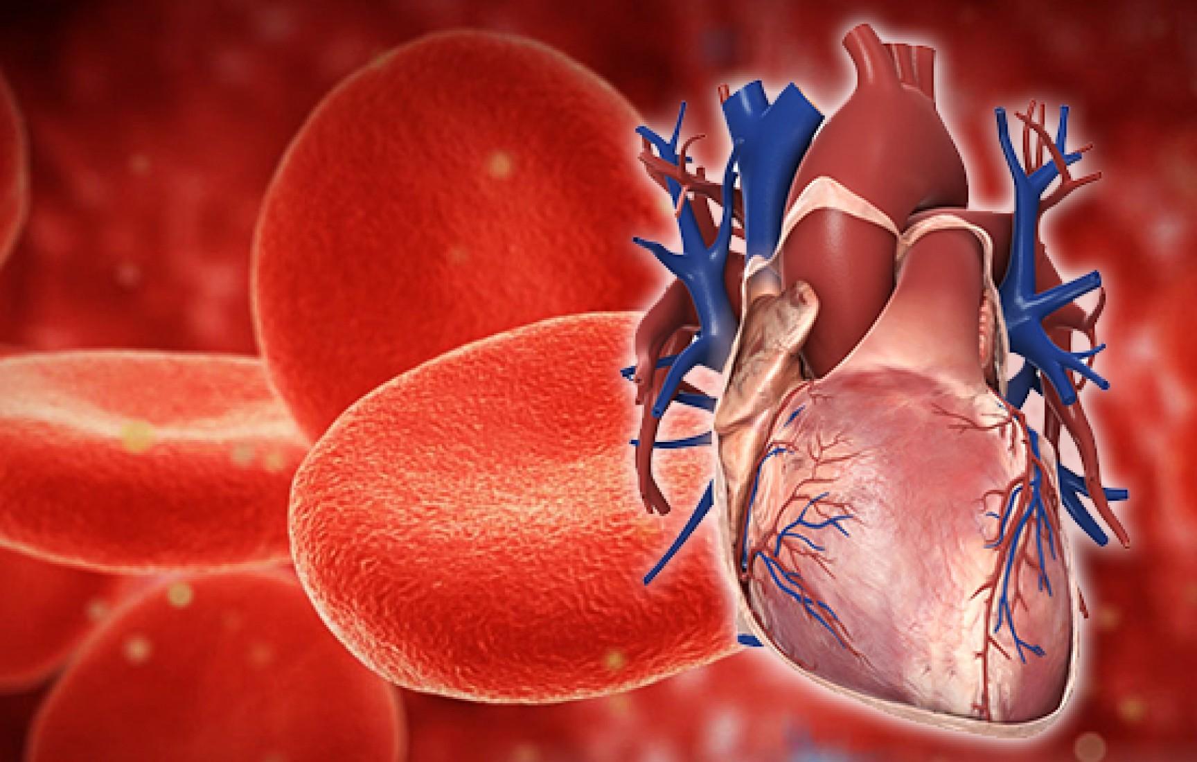 Kanda Hastalık Nasıl Saptanır?