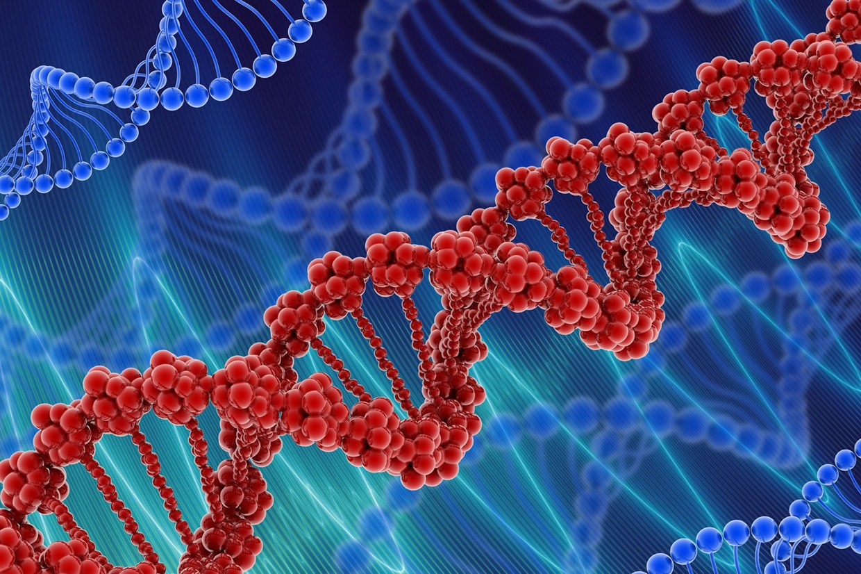 Biyoaktif Kan Grubu Testi Nedir?