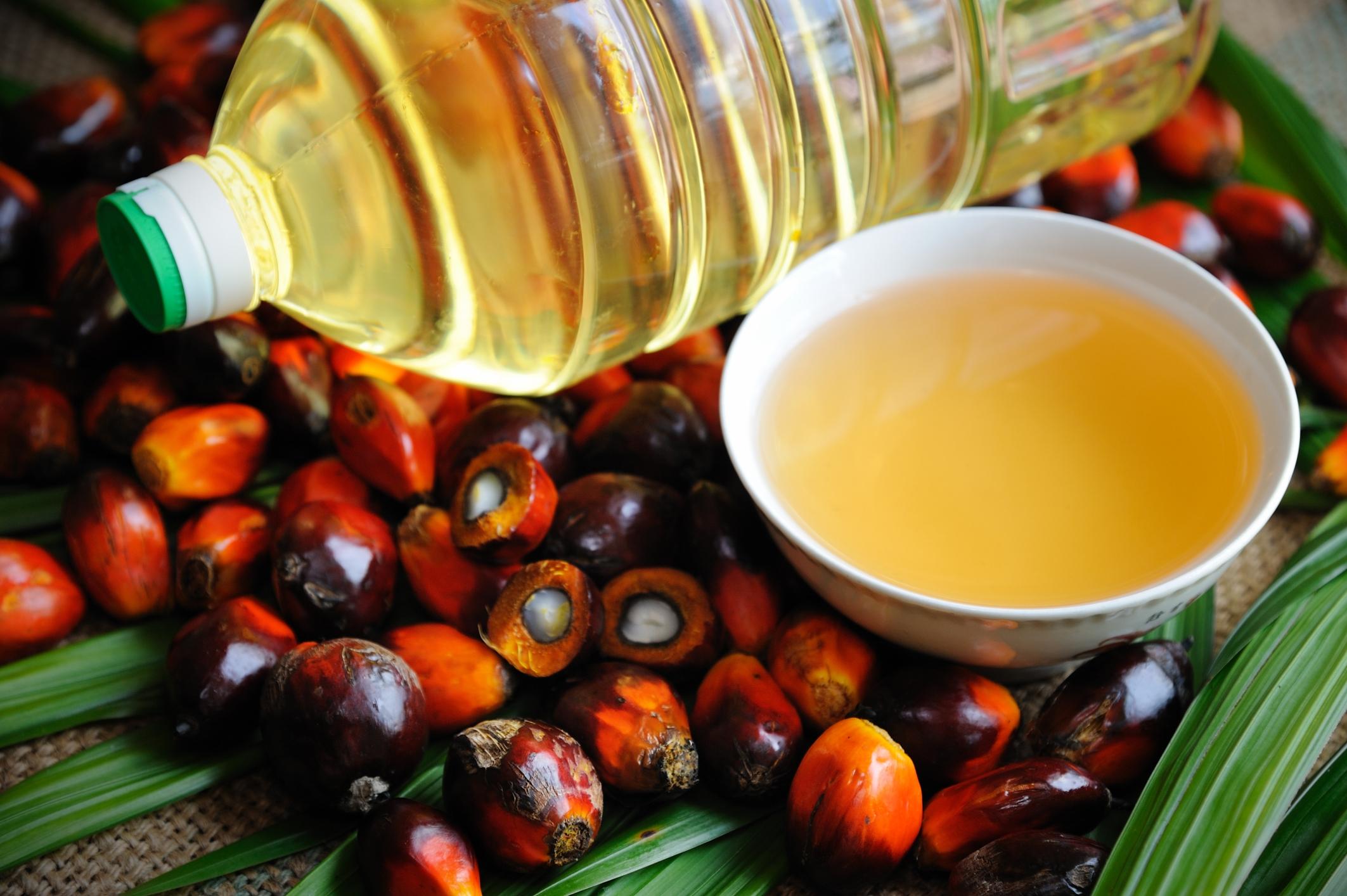 Palm Yağı Nedir? Sağlığımıza Zararları Nelerdir?