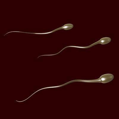 Kruger Yöntemi (Metodu) İle Spermiogram Nedir?