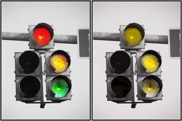 Renk Körlüğü Kimlerde Görülür Belirtisi ve Tedavisi nelerdir?