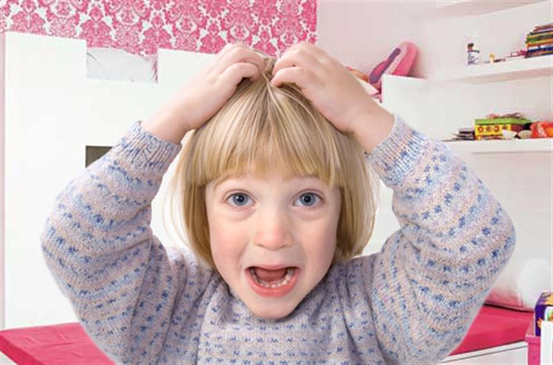 Saç Bitinin Belirtileri Nelerdir?