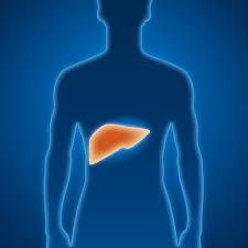 Ülkemizde Hepatit B Taşıyıcılığı Azalıyor