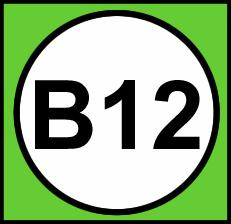 Vitamin B 12 Eksikliği Nedir? B 12 Vitamin Eksikliği Belirtileri:
