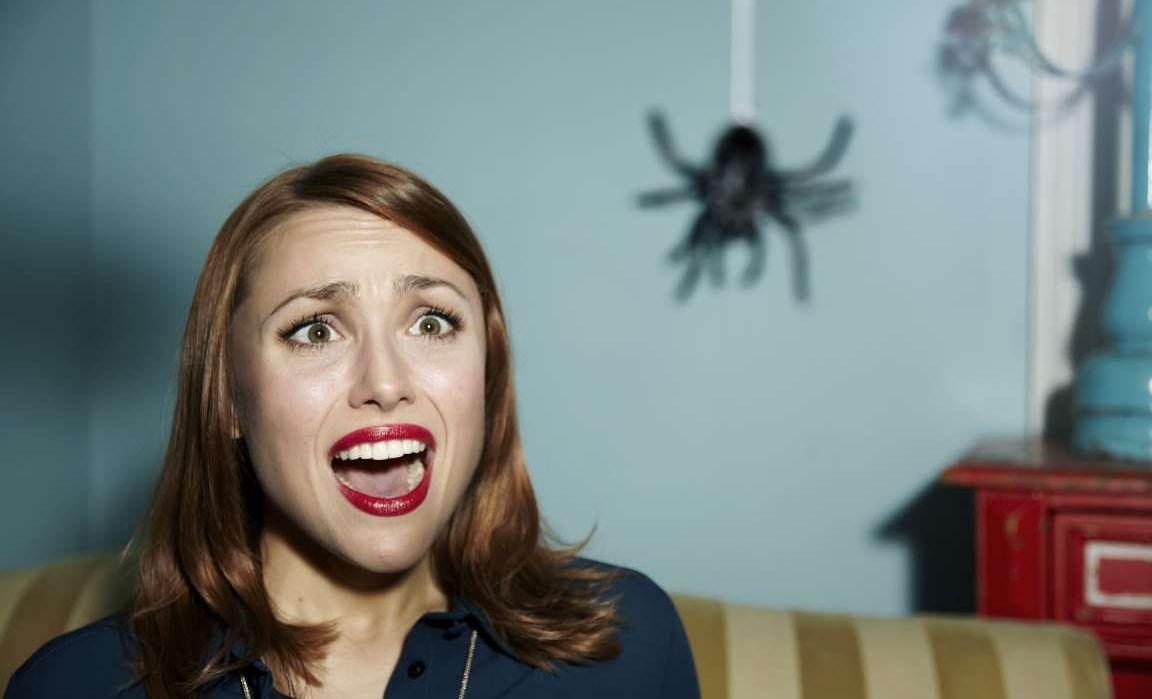 örümcek korkusu