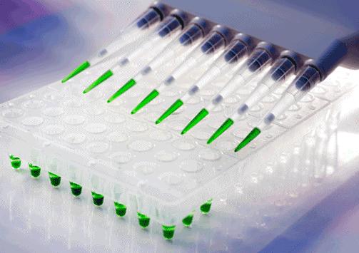 Serolojik testler nelerdir?