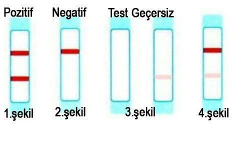 Yanlış Pozitif Gebelik Testinin 7 Nedeni